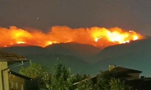 TRAGEDIJA. Gori Stara Planina. Rusi dolaze u pomoć. Država za sada slabo reaguje.