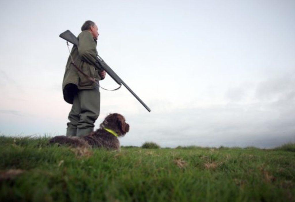 Francuska : Pas pucao puškom na svog gazdu