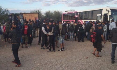 Do kraja godine oko 30000 migranata u Srbiji. Kritično u Kanjiži gde se građani već samoorganizuju