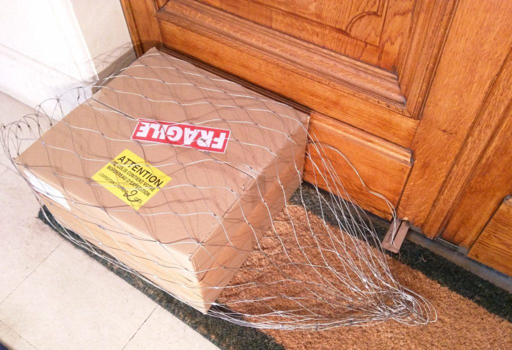 Saint-Denis : Poštar ostavio paket ispred vrata, a onda se desilo neočekivano