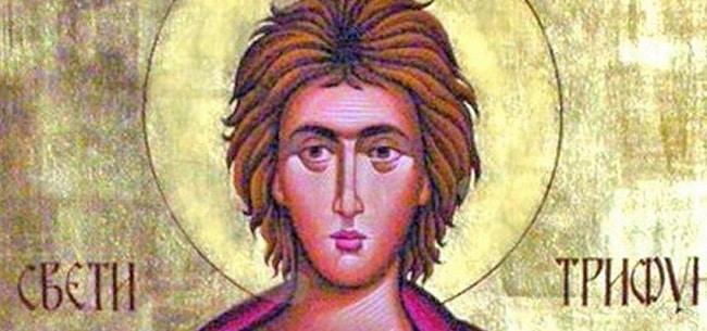 Danas je Sveti Trifun. Obavezno uradite sledeće a od kiše zavisi…