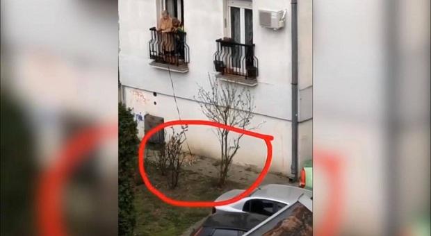 (VIDEO)Serbie : Une femme promène son chien depuis son balcon
