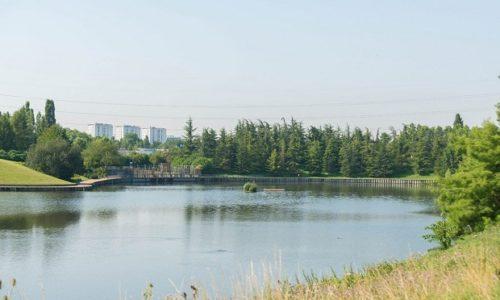 """UŽAS. Aulnay-sous-Bois (93) : Silovana žena u parku """"Sausset"""""""