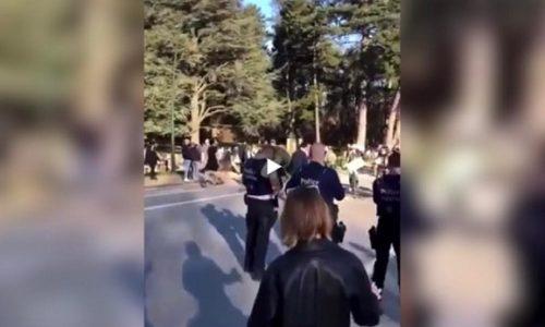 (VIDEO)Na hiljade ljudi bez maske u parku. Policija nemoćna