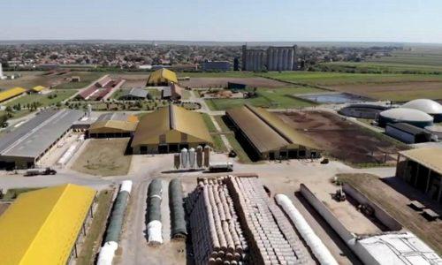 (VIDEO)Serbie: La ferme biologique de Čurug est l'une des plus grandes d'Europe, car l'électricité provient du fumier